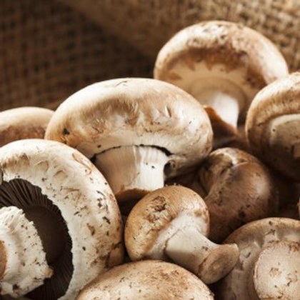 Organic Mushrooms - 150g