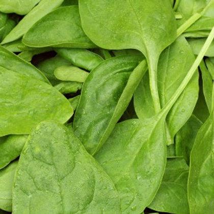Organic Baby Spinach - 100g