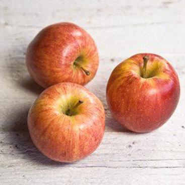 Organic Juicing Apples - 500g