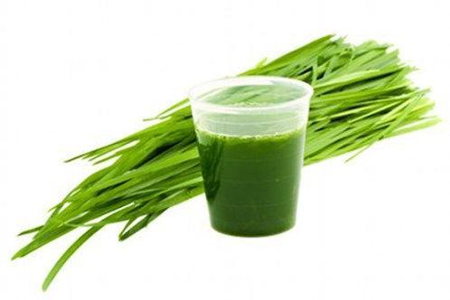 Frozen Organic Wheatgrass Shots - 16 Pk