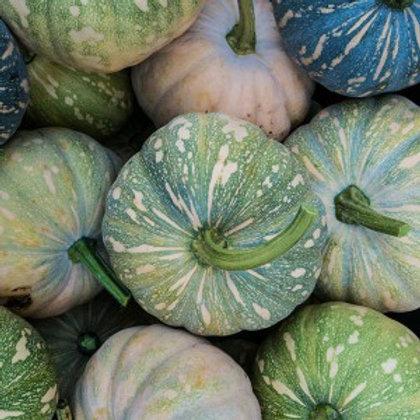 Organic Jap Pumpkin - 1kg