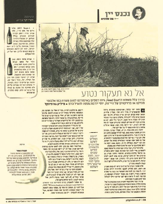 אל נא תעקור נטוע- חיליק גורפינקל, גלובס, 20.2.2014