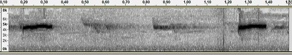 AJP609 SIb Tjif 17112017 Gijsbert.jpg