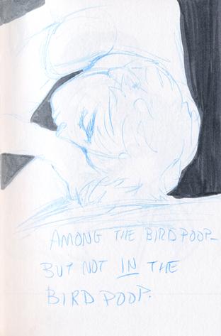 birdpoop.png
