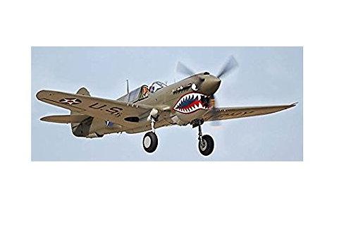 P-40 WARHAWK 1/4TH SCALE