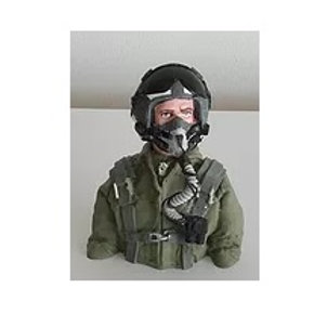 JET PILOT 1/6TH OUTER VISOR UP-BUST