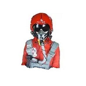 1/5th scale Jet Pilot bust- Thunderbird