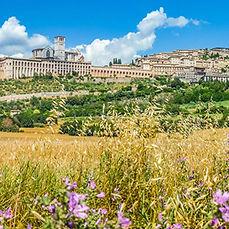 Cammino di Assisi.jpg