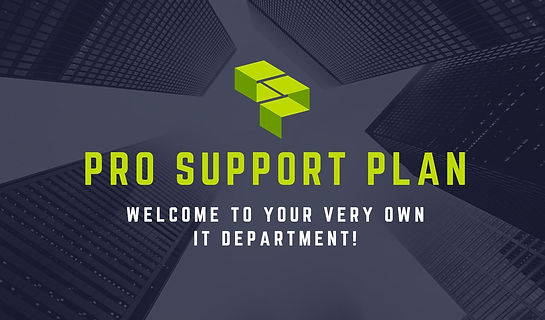 Pro Support Plan