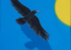 As the Crow Flies.jpg
