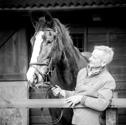 Horses-1697