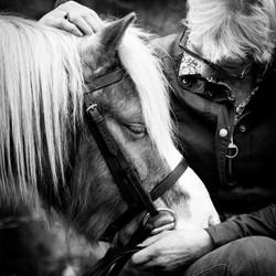 BW pony cuddle-3739