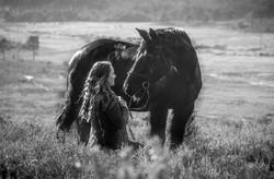 Horses-1421