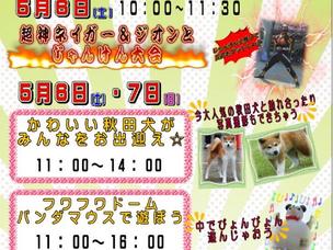 ゴールデンウィークイベント【超神ネイガー・秋田犬ほか】
