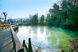 恋ヶ窪 姿見の池