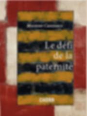 LE DEFI DE LA PATERNITE.png