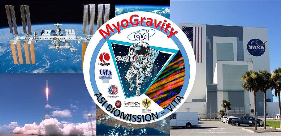 MyoGravity.jpg