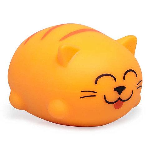 Cute Sqeezy Cats