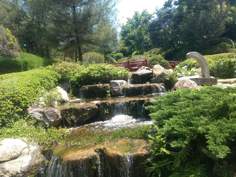 Jardin Japones-Jardines de Mexico- Club