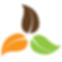 boulder branding agency