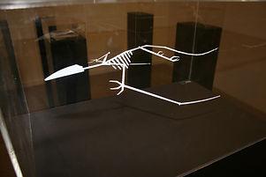 Pterosaur_-_248–65_million_years_ago_-_I