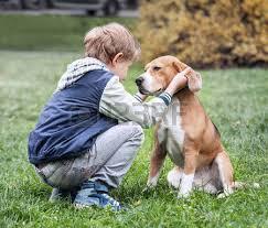 Quão importante pode ser a convivência com um pet na educação de uma criança?