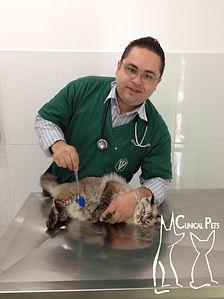 Dr. Roberto Siqueira medicando paciente em tratamento com ozonioterapia