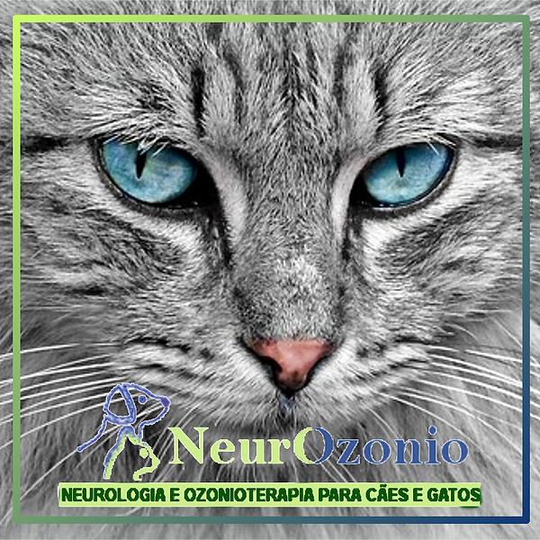 casos-de-sucesso-ozonioterapia.png