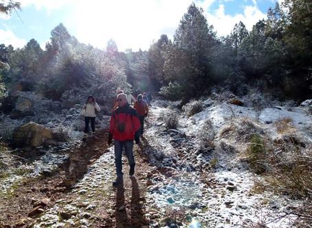 La nieve nos vuelve a sorprender en la visita a las Pinturas Rupestres de Moratalla