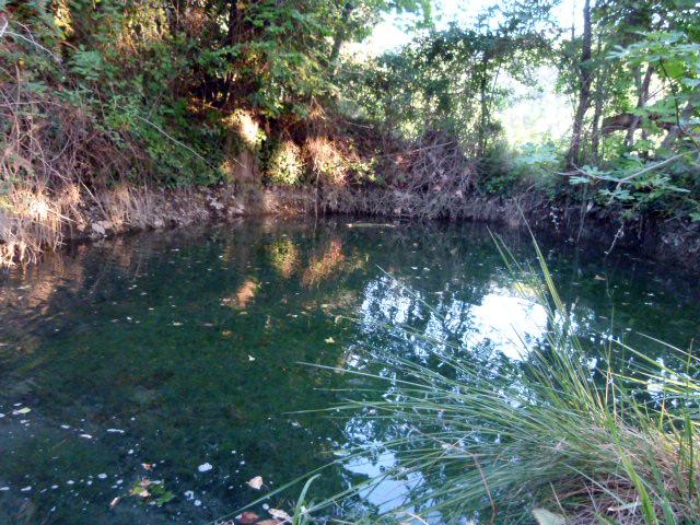 Fuente natural en Moratalla