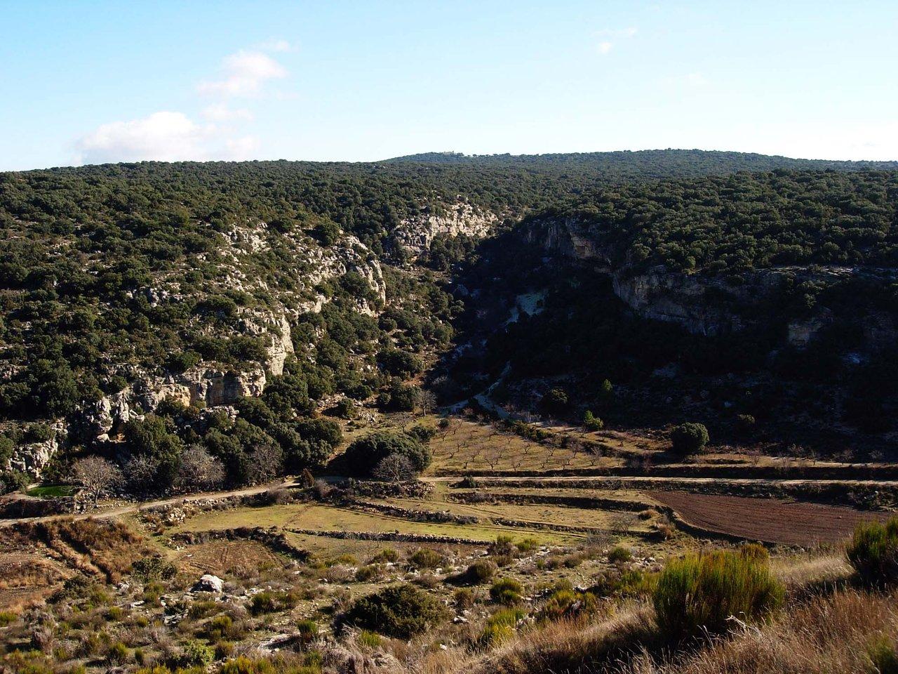 Bosque de Bajil en Moratalla
