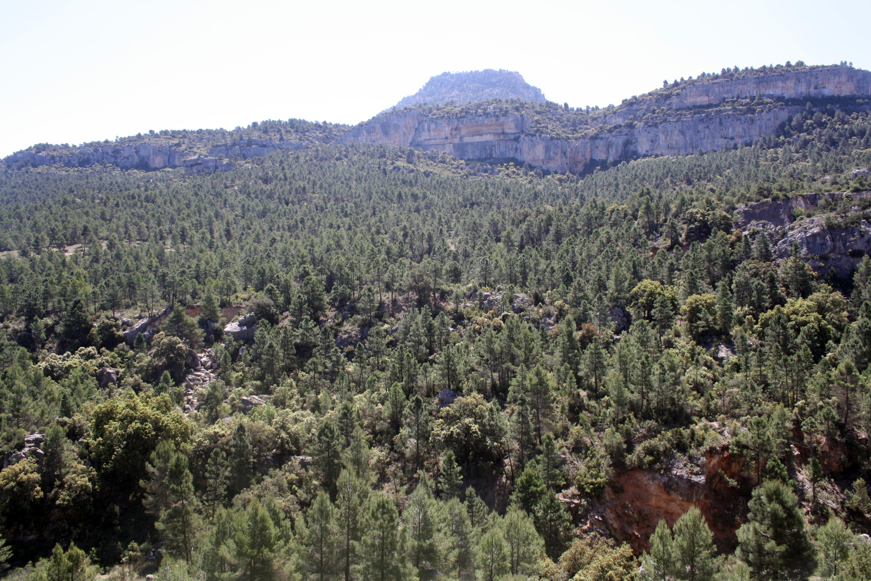 Ruta por el río Alhárabe Moratalla