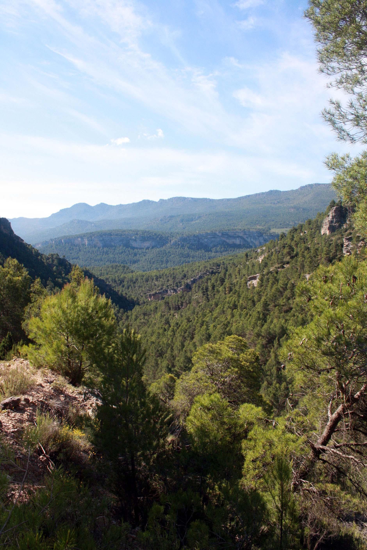 Naturaleza en Moratalla