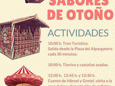 Sabores de Otoño - Mercadillo El Mesoncico (domingo 24 Noviembre)