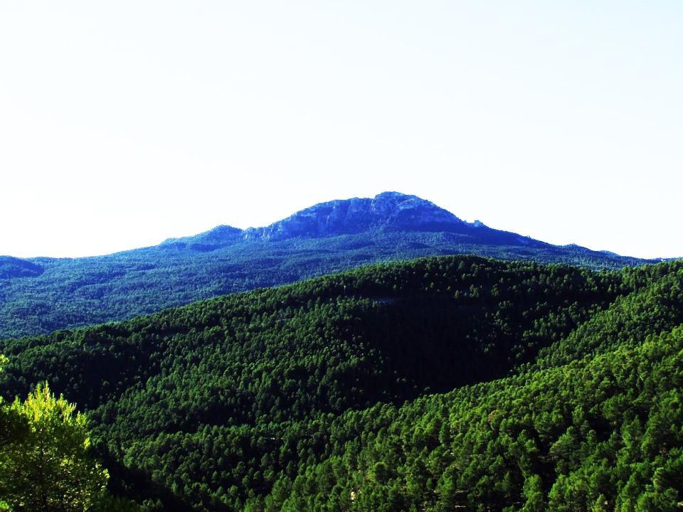 Pico del Buitre en Moratalla