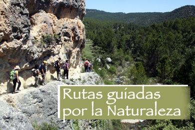 rutas murcia, rutas moratalla, rutas naturaleza, rutas guiadas naturaleza