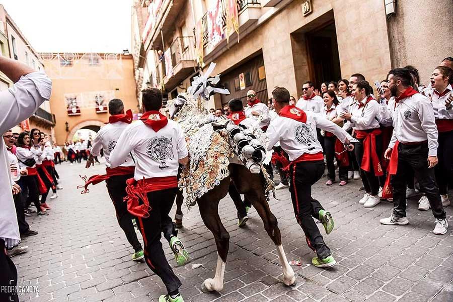 Caballos del vino, Caravaca, Murcia, UNESCO