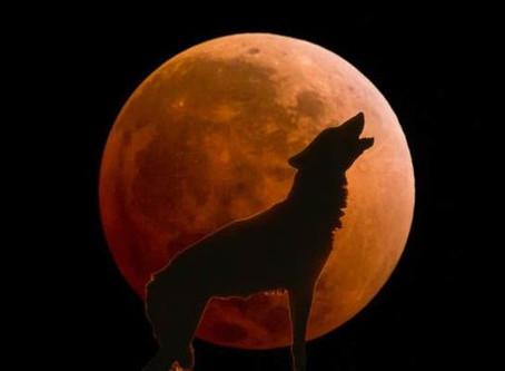 Super Blue Blood Wolf Moon