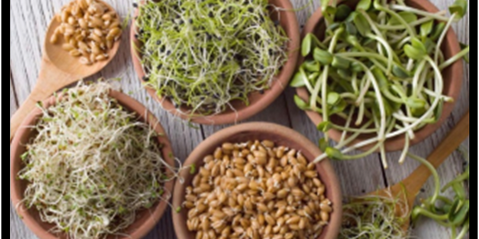 Sprouts Class #4 ~ Naturally Detox