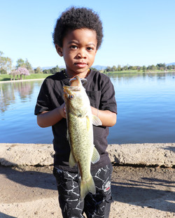 Bass fishing in Los Angeles