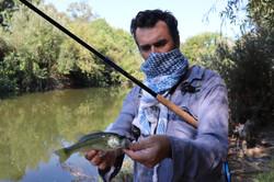 Tenkara Fly fishing in the LA river