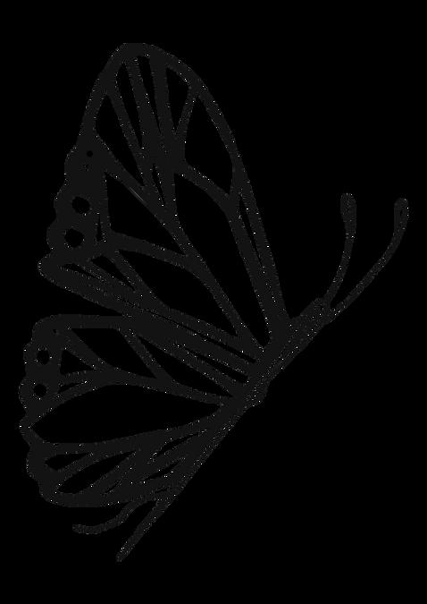 Sandra_Logo_v1.png