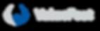 logo ValueFeet sans baseline