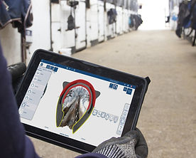 conception numérique fer a cheval