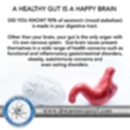 healthy gut happy brain.jpg