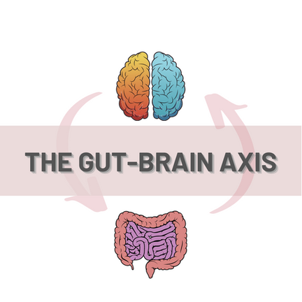 What's The Connection Between Brain And Gut?   The Gut-Brain Axis