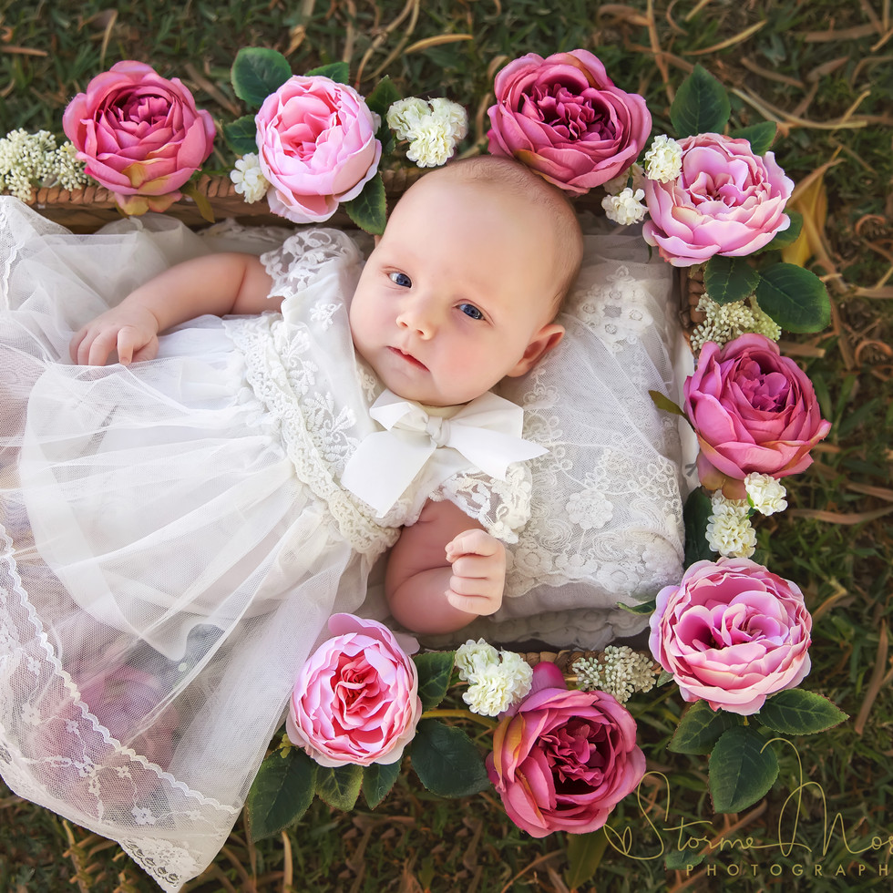 newborn photography newcastle rose baske