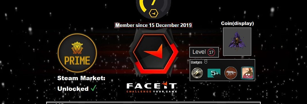 19' Faceit Lvl. 7 +4 Wins | 140 Matches | Market: Enabled | Prime | Instant