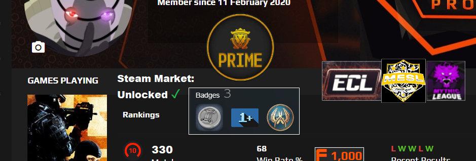 Faceit 2,715 Elo | Prime | 1.34 K/D | Market: Unlocked | 330 Matches | Instant