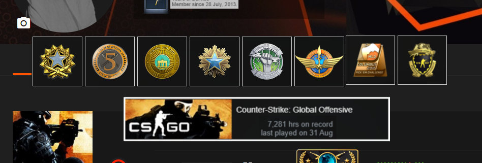 🥇🏆14' Faceit 2,979 Elo | 2,196 Matches | 8 Medals | 7,281 Hours | Instant Dl.